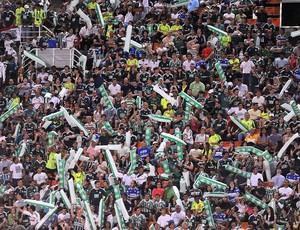 Torcida, Palmeiras x Santos (Foto: Marcos Ribolli / Globoesporte.com)