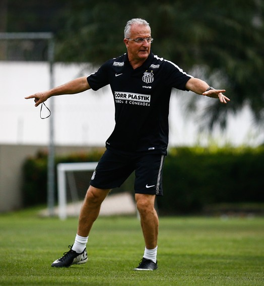 embalado (Ricardo Saibun / Divulgação SantosFC)