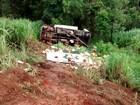 Caminhão tomba e carga é saqueada na BR-365 em MG