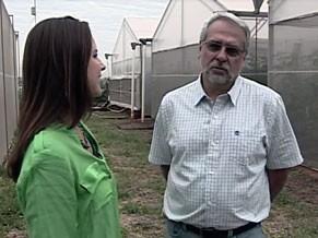 Professor de Engenharia Agrícola conversa com a repórter Lizandra Trindade (Foto: Divulgação)