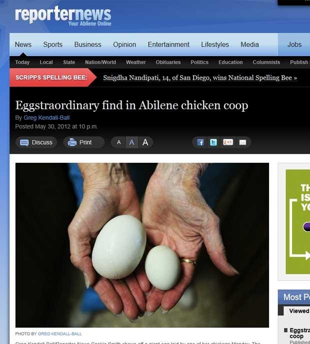 Galinha colocou um ovo gigante em fazenda em Abilene. (Foto: Reprodução)