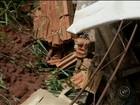 Barranco cede e encobre parte de casa em Avaré: 'Não tem o que fazer'