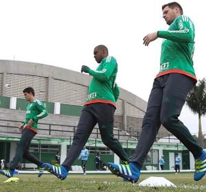 Vagner Vinicius Jailson Palmeiras (Foto: Cesar Greco / Ag. Palmeiras / Divulgação)