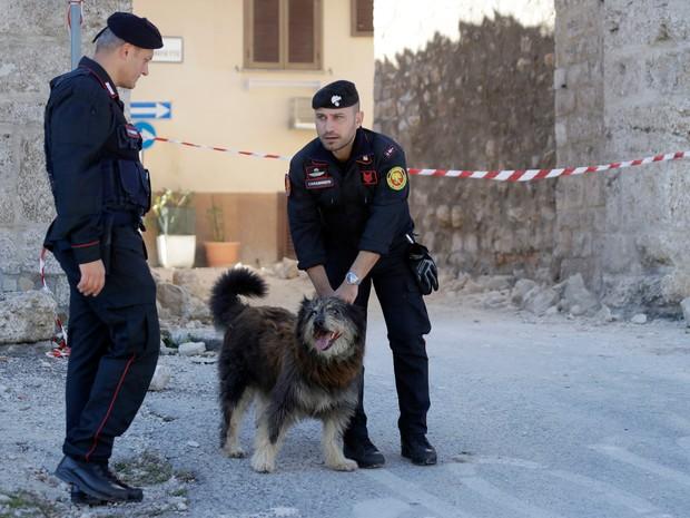Cão foi resgatado do centro histórico de Norcia, na região central da Itália, após o tremor de domingo (30)  (Foto: Gregorio Borgia/AP)