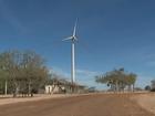 PE passa a gerar 181.9 MW de energia limpa em complexo eólico no Agreste