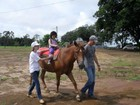 Cavalos usados por crianças na Apae são furtados na véspera de Natal