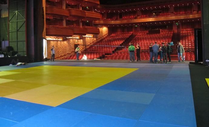 Tatame no teatro do Desafio de Judô (Foto: José Geraldo Azevedo / GloboEsporte.com)
