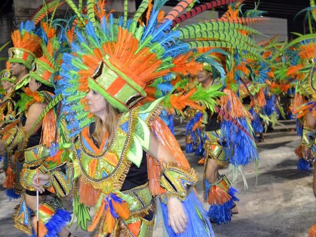 Deficiente visual realiza sonho de desfilar no carnaval do ES. (Foto: Geovana Chrystêllo/ G1)