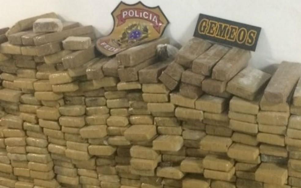 Operação apreende meia tonelada de maconha e cocaína em galpão e prende 3 pessoas na Bahia (Foto: Divulgação/SSP-BA)