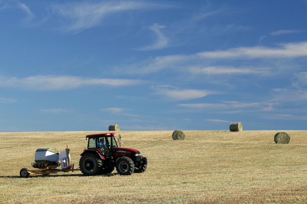 As cooperativas agropecuárias representam, atualmente, 56% da economia agrícola do Paraná.  (Foto: Divulgação/Frísia)