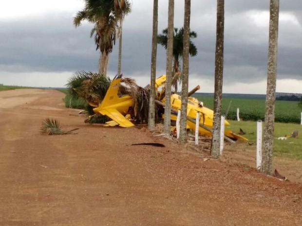 Piloto sobrevive após queda de avião agrícola em fazenda de Goiás (Foto: Reprodução/TV Anhanguera)