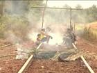 Índios no Maranhão interditam Estrada de Ferro Carajás