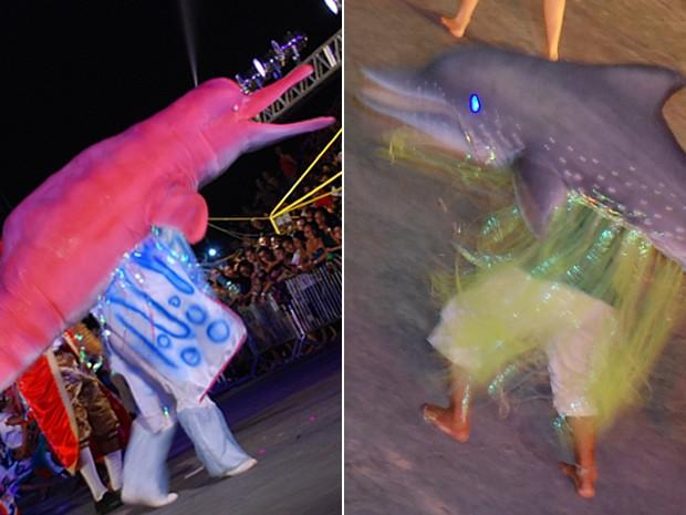 Botos Cor de Rosa e Tucuxi disputam a melhor encenação da lenda (Foto: Arquivo/Zé Rodrigues)