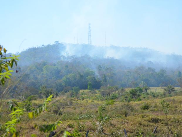 Focos de incêndio atingiram a mata na última terça-feira, em Cacoal (Foto: Magda Oliveira/G1)