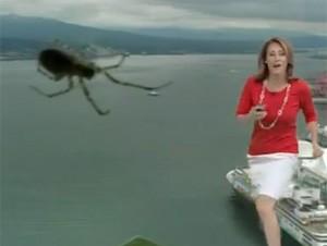Kristi Gordon levou um susto ao ver aranha na lente da câmera e virou sensação na web (Foto: Reprodução/YouTube/GlobalBCTV)
