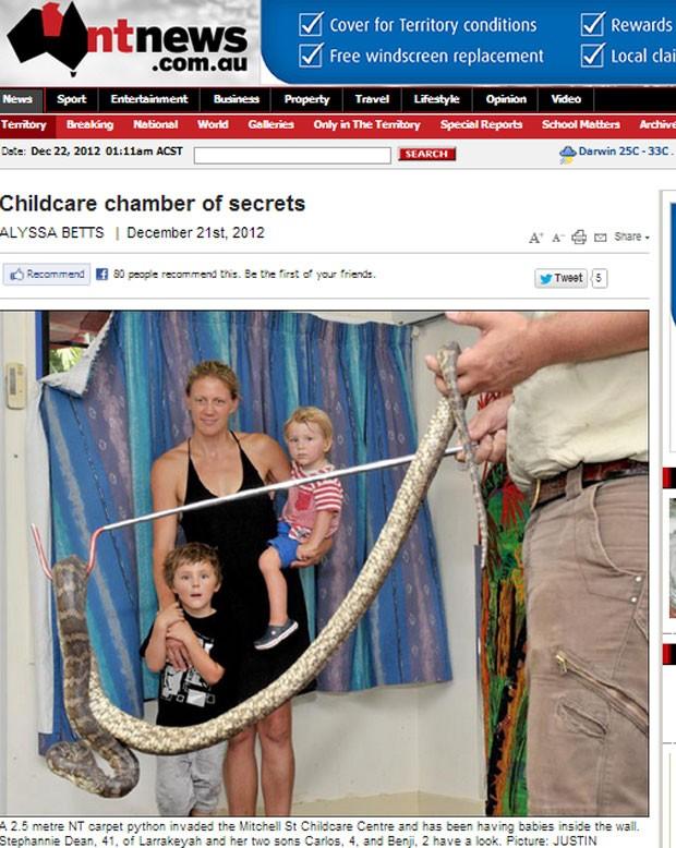 Cobra de 2,5 metros e 23 filhotes foram encontrados em uma creche em Darwin (Foto: Reprodução)