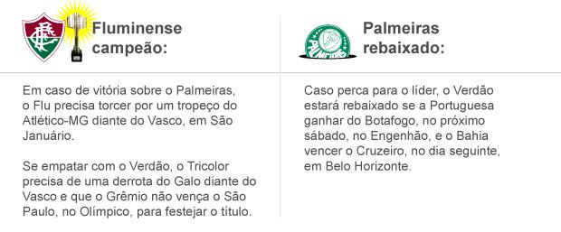 info fluminense campeão e palmeiras rebaixado - 3 (Foto: arte esporte)