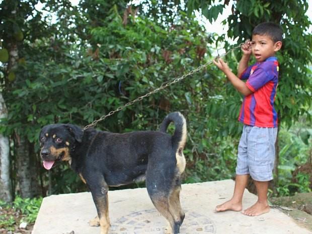 Segundo a mãe e conselheira tutelar, cão guiou menino de volta para casa (Foto: Marilene Silva / Rede Amazônica)