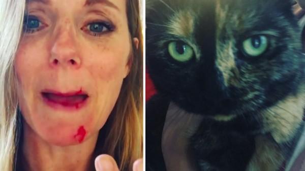 A Spice Girl Geri Halliwell ferida e suas gatas (Foto: Instagram)