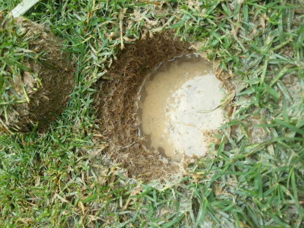 Gramado do Mineirão com fibra (Foto: Divulgação)
