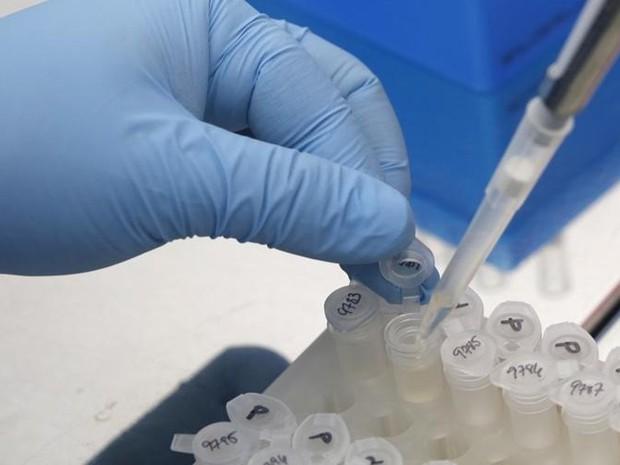 Pesquisador trabalha nos resultados de teste para impedir disseminação do vírus da zika, em laboratório da Cidade do Panamá (Foto: Reuters/Carlos Jasso)