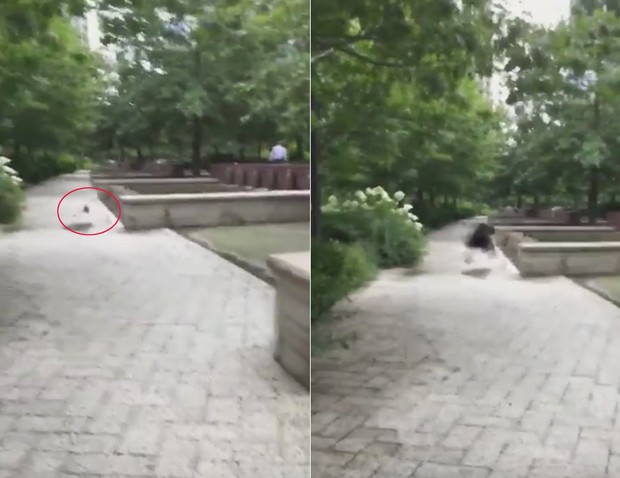 Menina solta borboleta, mas pássaro surge e devora inseto (Foto: Reprodução/YouTube/ssbhanot928)