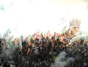 Torcida, Palmeiras x Coritiba (Foto: Marcos Ribolli  / Globoesporte.com)