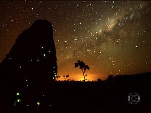 Chão de estrelas que ilumina a noite pantaneira. (Foto: Globo Repórter)