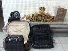 Polícia apreende 66 quilos de maconha no trecho de Arujá da Dutra