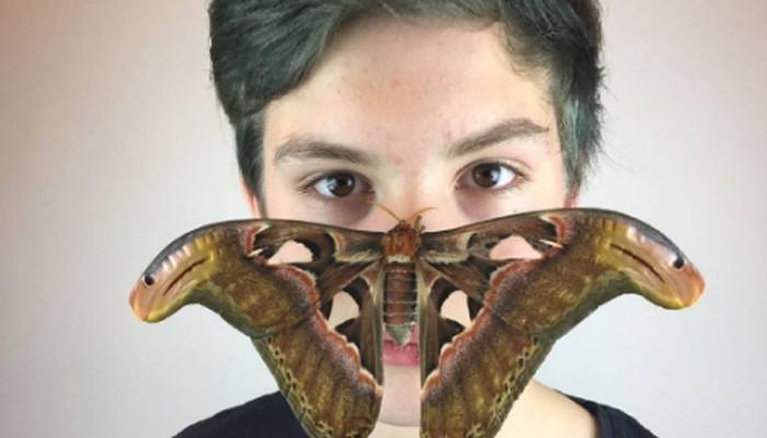 (Foto: Reprodução/Instagram/insect_team)