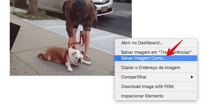 Salvando imagem GIF no computador (Foto: Reprodução/Helito Bijora)
