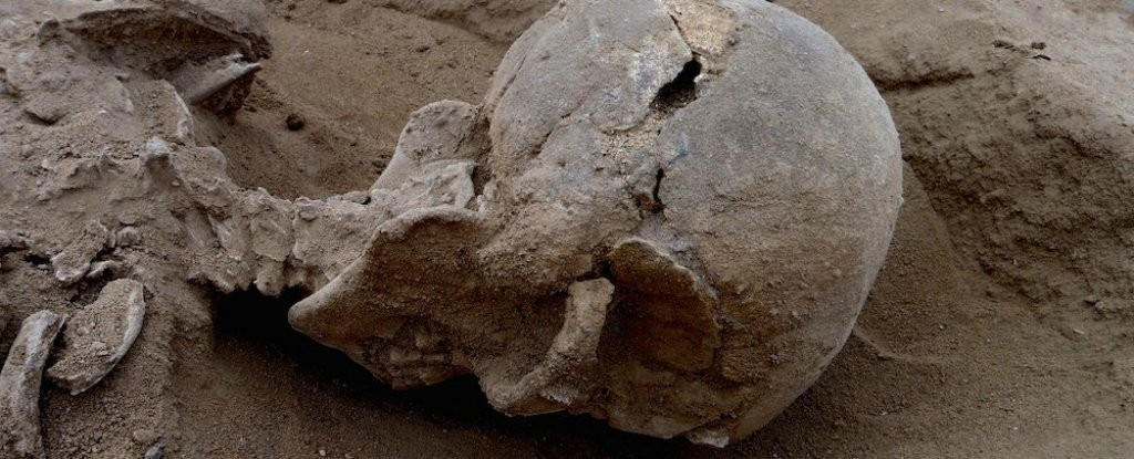Crânio esmagado é uma das evidências de mortes violentas no grupo (Foto: Marta Mirazón Lahr)