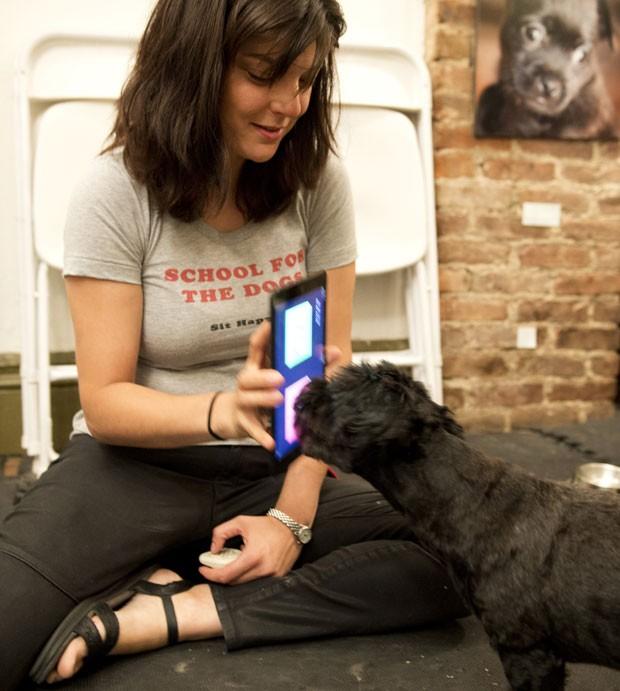 """Anna Grossman segura seus iPad enquanto o cachorro Amos toca a tela, em uma demonstração de uma aula da """"Schooll for the dogs"""", em Nova York (EUA). (Foto: Don Emmert/France Presse)"""