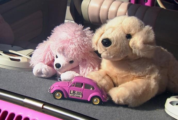 Eles são cheios de acessórios e detalhes na cor rosa, é claro! (Foto: Reprodução / TV TEM)