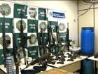 RJ teve mais de 80 mil armas apreendidas nos últimos nove anos