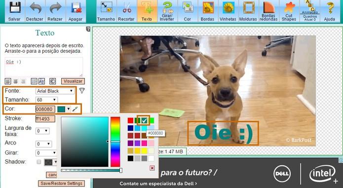 Personalize o tamanho, estilo da fonte e a cor do texto no GIF (Foto: Reprodução/Barbara Mannara)