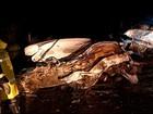 Sete pessoas morrem durante fim de semana nas rodovias do Norte de MG