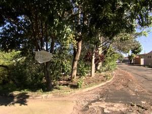 Moradores reclamam de lixo e sujeira ao lado da Avenida Liberdade, em São Carlos (Foto: Wilson Aiello/EPTV)