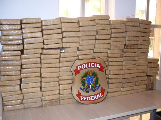 Maconha apreendida pela Polícia Federal na Bahia (Foto: PF/Divulgação)