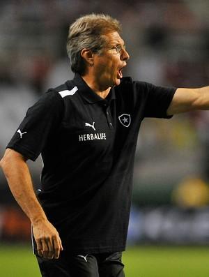 Oswaldo de Oliveira Botafogo x Fluminense (Foto: Fernando Soutello / AGIF)