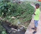 Menino achado após enchente não sabia nadar (Reprodução/TV Globo)