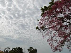 Tempo fica nublado em Ariquemes e toda a região do Vale do Jamari (Foto: Eliete Marques/G1)