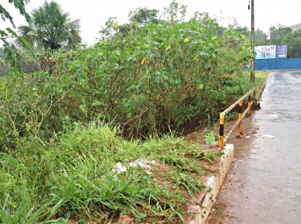 Corpo foi encontrado debaixo de ponte em Araguaína (Foto: Portal O Norte/Divulgação)