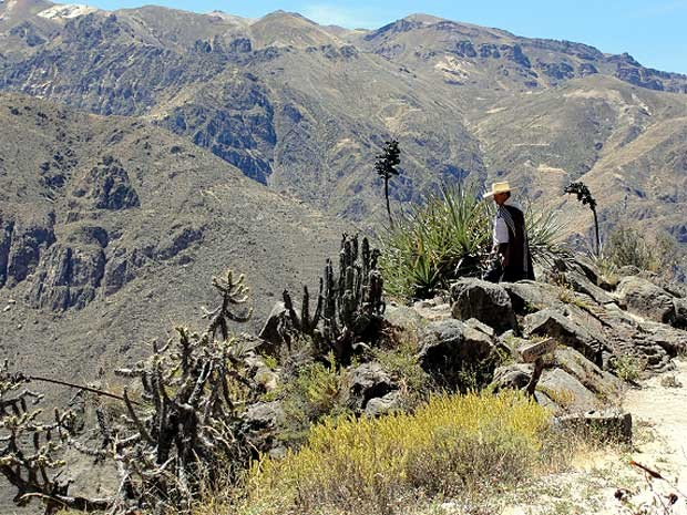 Vale do Colca, no Peru  (Foto: Divulga&#231;&#227;o/TerradaGente )