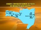 Cidades de SC fazem neste sábado (12) mutirões contra o Aedes aegypti