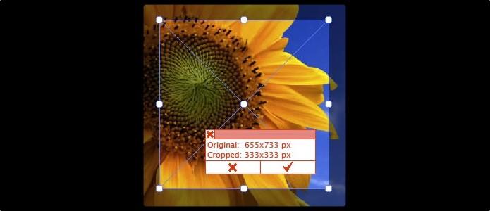 Corte pixels desnecessários (Foto: Reprodução/Paulo Alves)