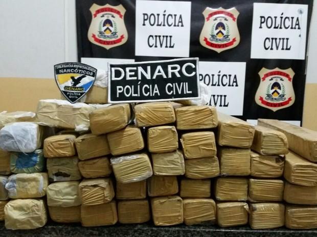 75 kg de drogas foram incinerados em Palmas (Foto: Polícia Civil/Divulgação)