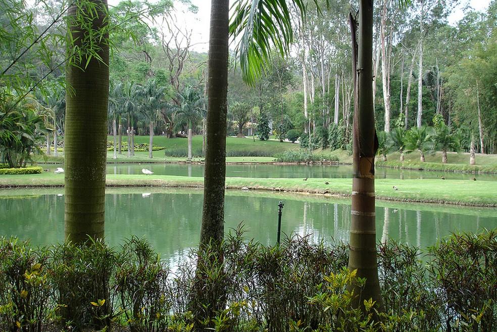 Jardim Botânico do Instituto de Inhotim em Minas (Foto: Carlo A .S. Bituin)