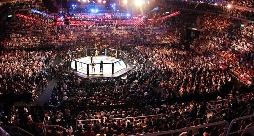 vai voltar (Divulgação/UFC)