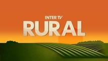 Agricultores esperam ansiosos pela chuva no sertão; relembre (Reprodução/Inter TV Cabugi)